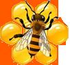 Восстановление здоровья продуктами пчеловодства
